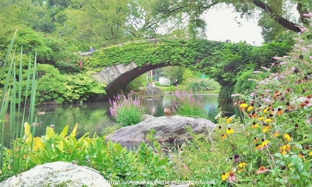 14-mystical-bridges-that-will-take-you-to-another_13