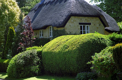 Thatched-houses-in-England-