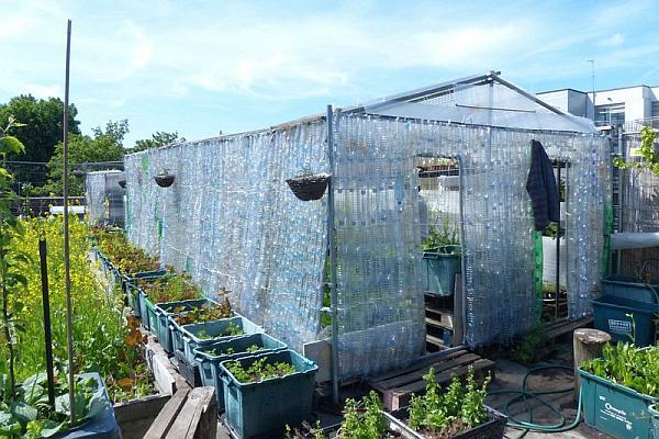 Repurposed_Plastic_Bottle_Greenhouses10