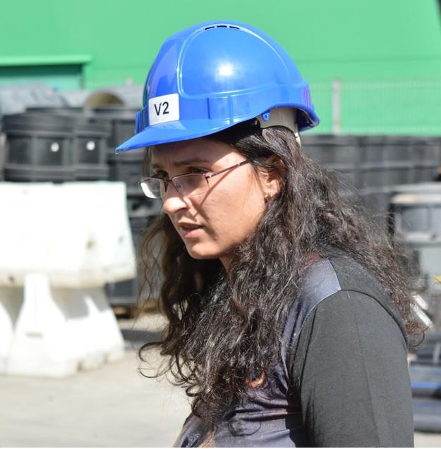 roxana bertea inginer structurist